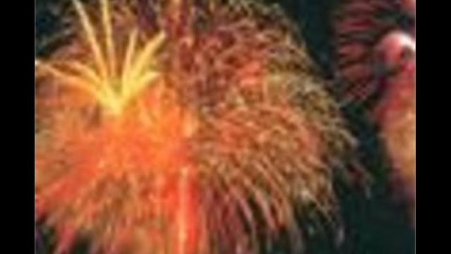 July 4th Fireworks Schedule