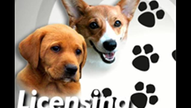 Agriculture Secretary Urges Pennsylvanians to License Their Dogs