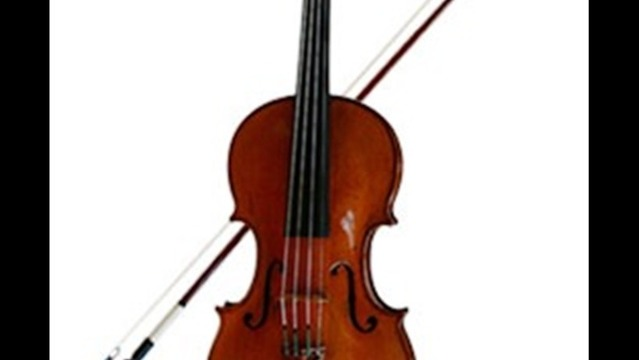 Violinists To Perform For School Students