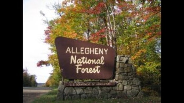 Allegheny National Forest offices closed due to threat