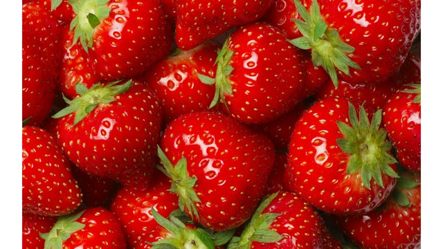 Road work cancels Strawberry Festival