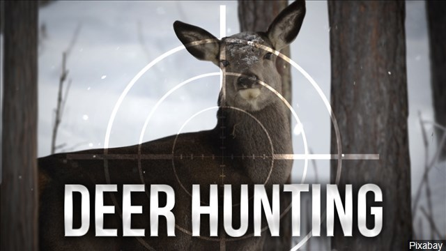 Regulated deer hunt planned at Presque Isle State Park