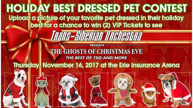 TSO Holiday Best Dressed Pet Contest