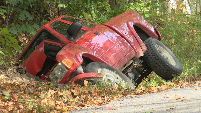2 People Injured in Accident involving Bees