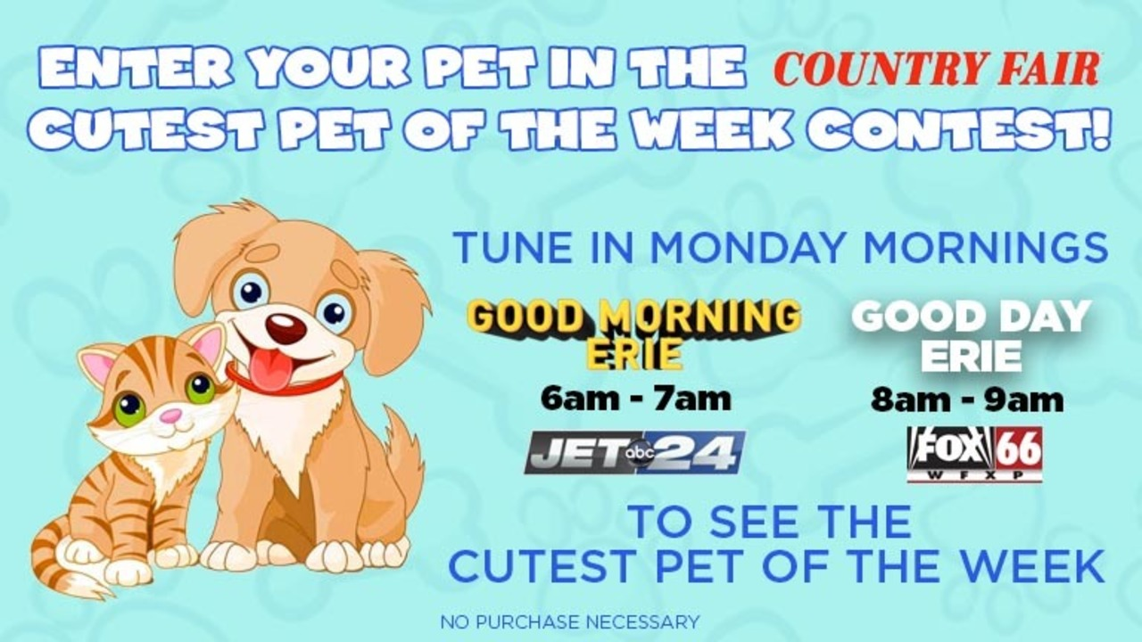 Cute Pet Of The Week