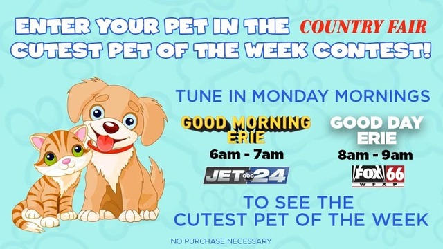 Cutest Pet of the Week