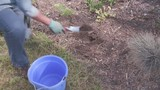 Garden Moments - Testing the Health of Your Soil