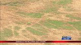 Millcreek Golf Course sabotaged just days before re-opening