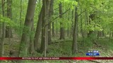 Waterworks Park petition to cut 400 trees in Girard